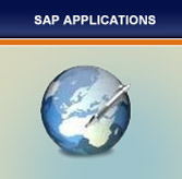 SAP Application